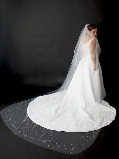 The Wedding Veil Ariel Designed For Her Sister S Photographer Dan Lippitt Photography